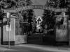Новое Донское кладбище. Фото: https://discours.io/events/ekskursiya/ekskursiya-novoe-donskoe-kladbische-inakomyslie-v-sssr#!