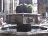 Испания. Барселона. Собор Святого Креста (внутренний двор; фонтан)
