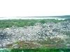 Соловки. Большой Заяцкий остров. Каменные курганы