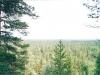 Соловки. Вид с Секирной горы (2002)