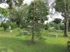 Осеченки. Кладбище при церкви Покрова Богородицы